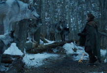 Fierce Females of Westeros Game of Thrones, Stormborn Arya and Nymeria (1)
